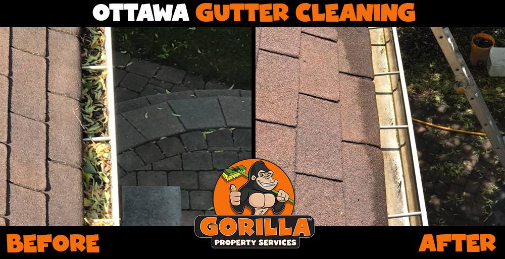 ottawa gutter cleaning