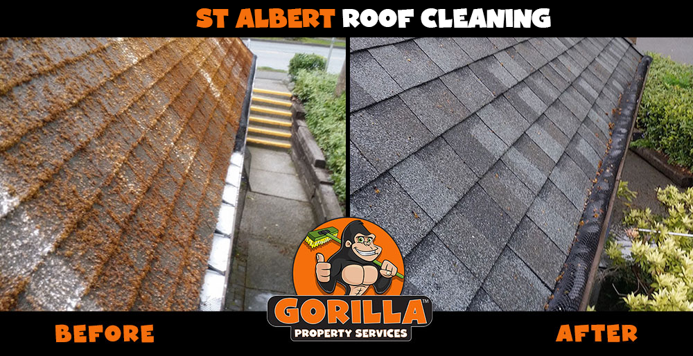 st albert roof cleaning