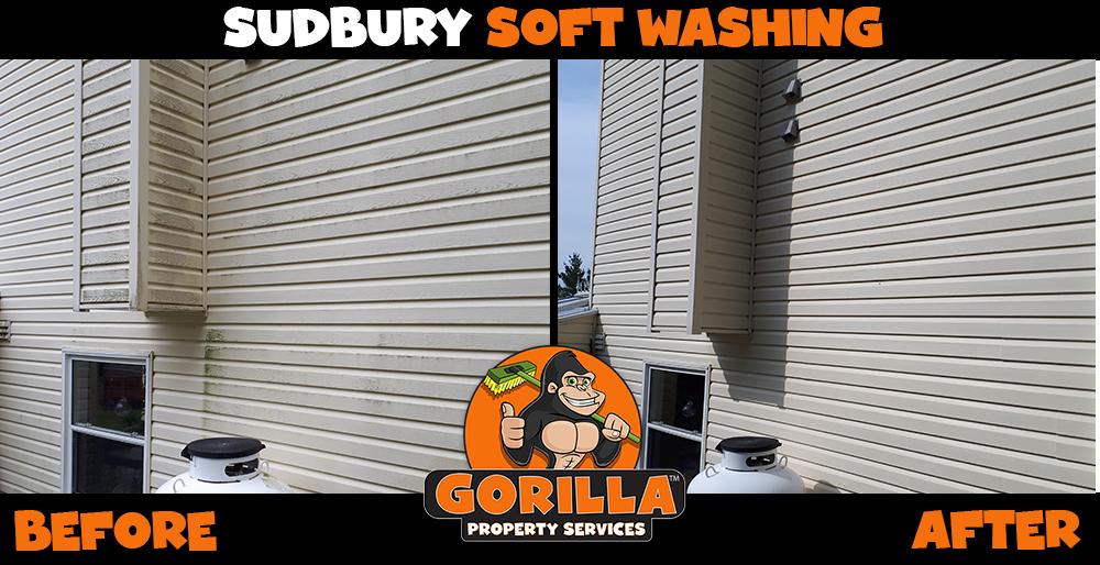 sudbury soft washing