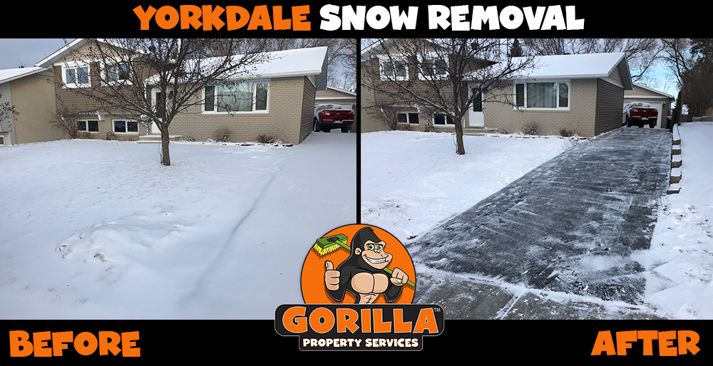 yorkdale snow removal