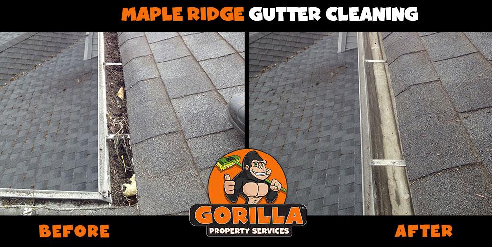 maple ridge gutter cleaning