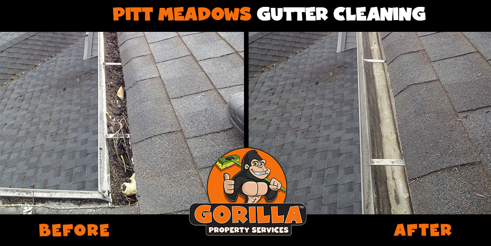 pitt meadows gutter cleaning