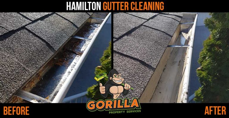 Hamilton Gutter Cleaning