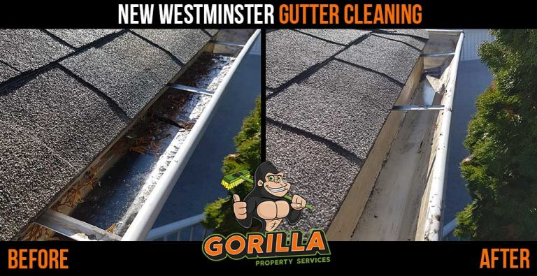 New Westminster Gutter Cleaning