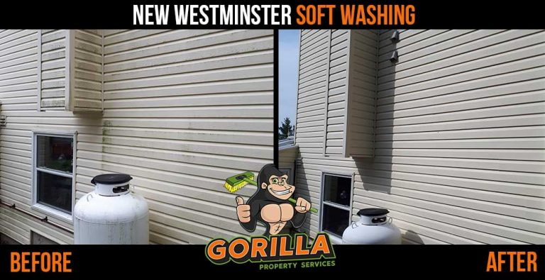 New Westminster Soft Washing