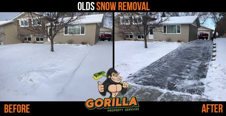 Olds Snow Removal & Salting
