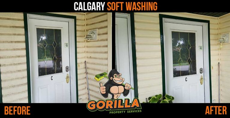 Calgary Soft Washing