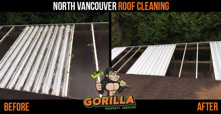 North Vancouver Roof Cleaning & Moss Removal