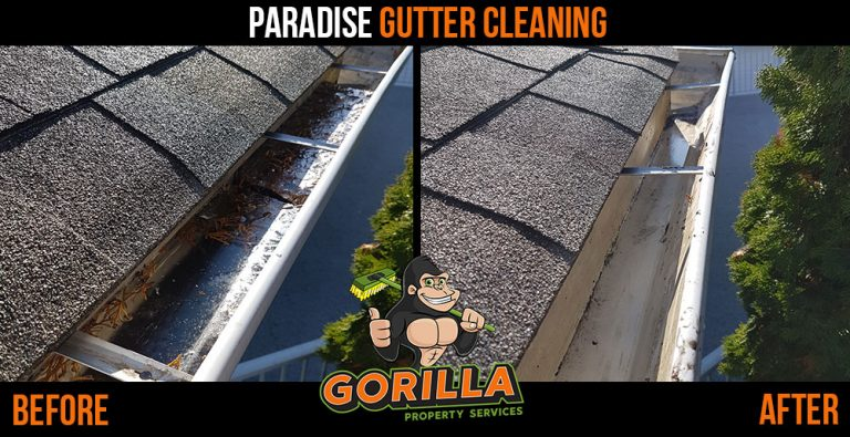 Paradise Gutter Cleaning