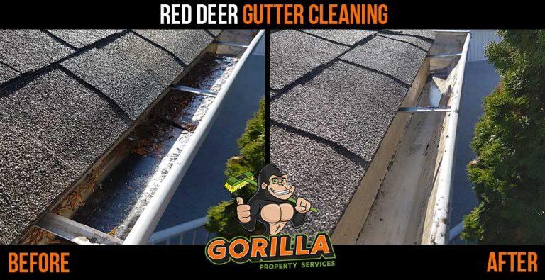 Red Deer Gutter Cleaning