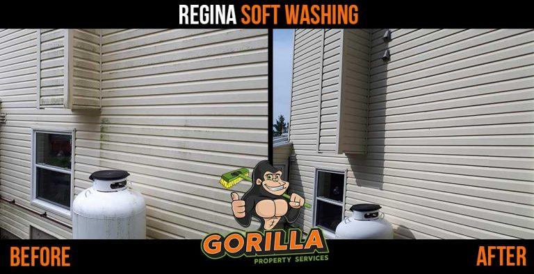 Regina Soft Washing
