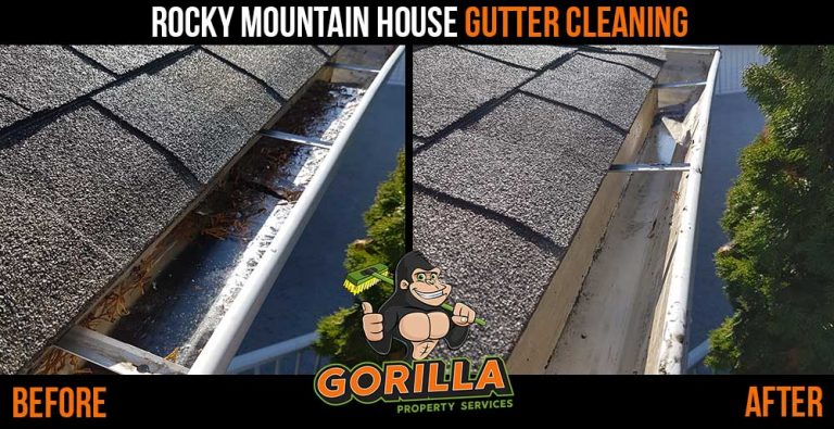 Rocky Mountain House Gutter Cleaning