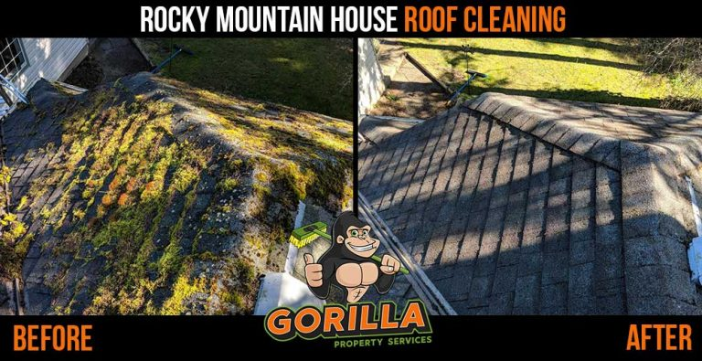 Rocky Mountain House Roof Cleaning & Moss Removal