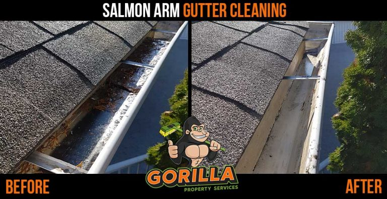 Salmon Arm Gutter Cleaning