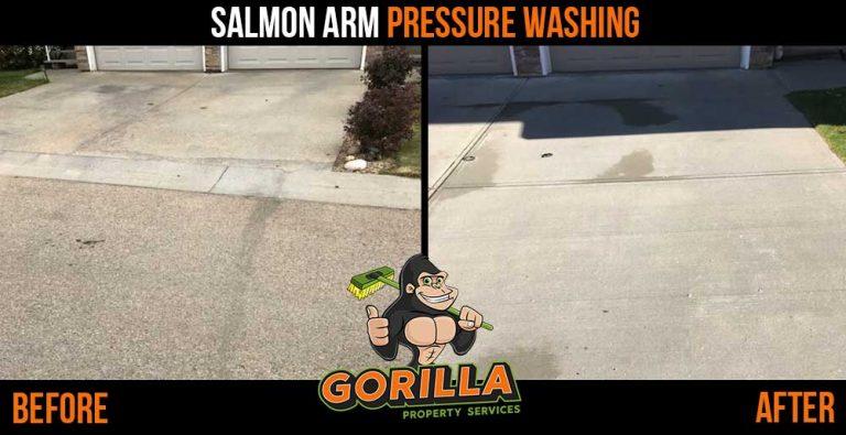 Salmon Arm Pressure Washing
