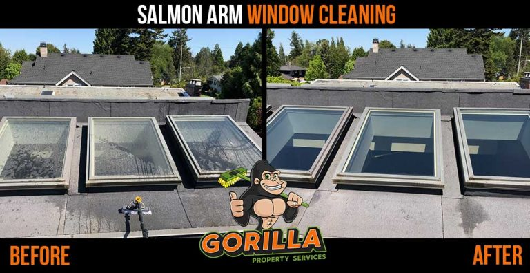 Salmon Arm Window Cleaning
