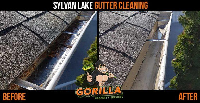 Sylvan Lake Gutter Cleaning
