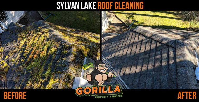 Sylvan Lake Roof Cleaning & Moss Removal