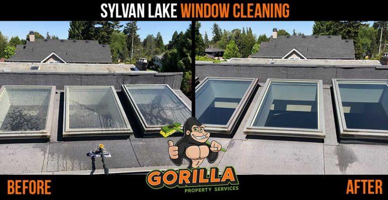 Sylvan Lake Window Cleaning