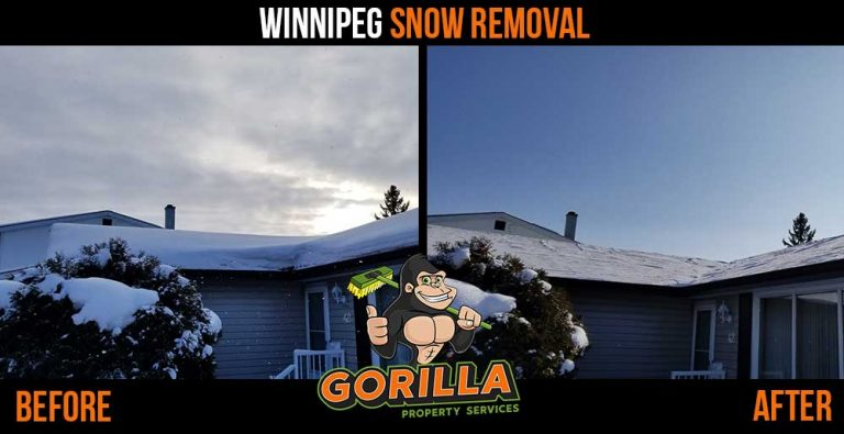 Winnipeg Snow Removal & Salting