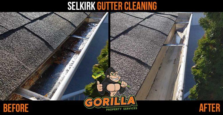 Selkirk Gutter Cleaning