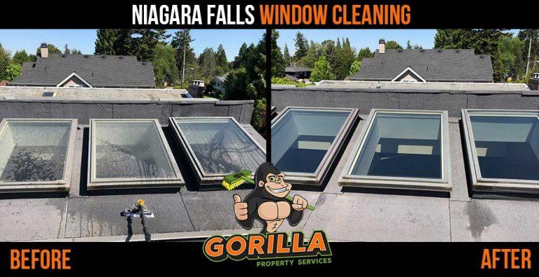 Niagara Falls Window Cleaning