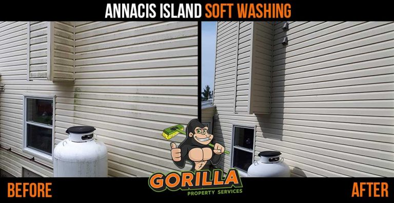 Annacis Island Soft Washing