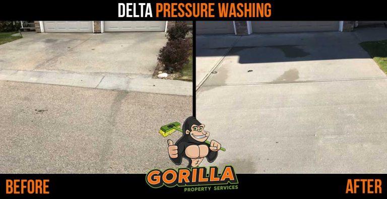 Delta Pressure Washing