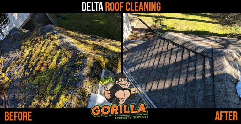 Delta Roof Cleaning and Moss Removal