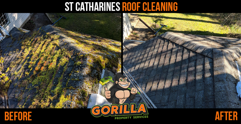 St. Catharines Roof Cleaning & Moss Removal