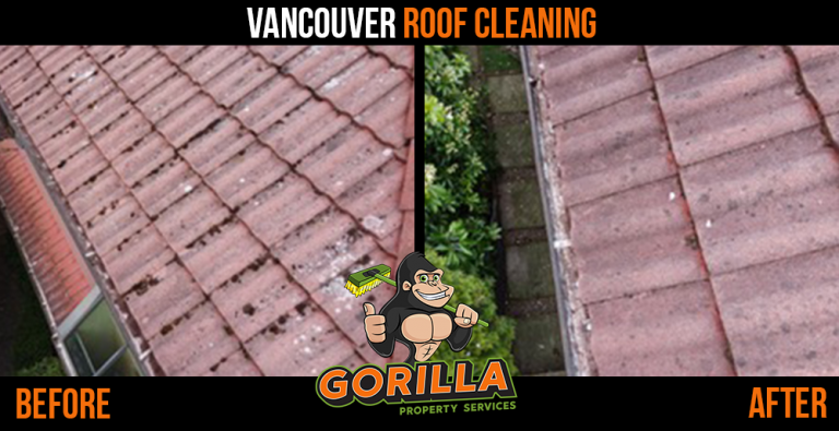 Vancouver Roof Cleaning & Moss Removal