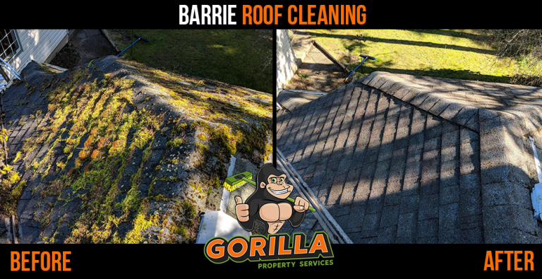 Barrie Roof Cleaning & Moss Removal