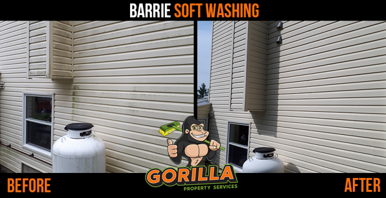 Barrie Soft Washing