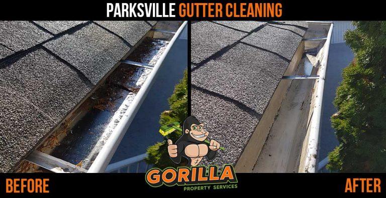 Parksville Gutter Cleaning