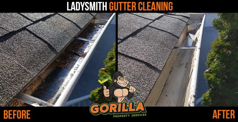 Ladysmith Gutter Cleaning