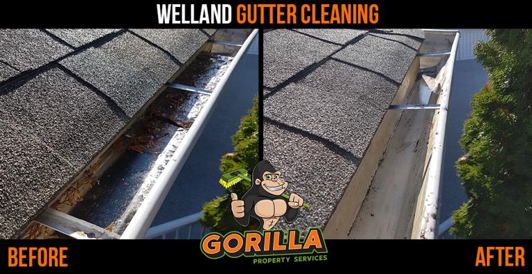 Welland Gutter Cleaning