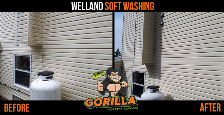 Welland Soft Washing