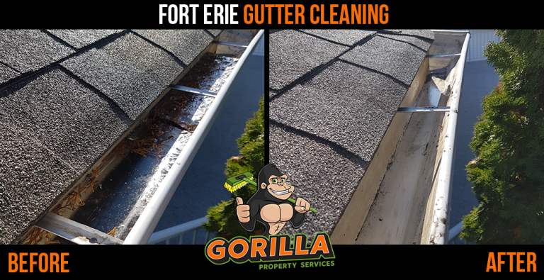 Fort Erie Gutter Cleaning