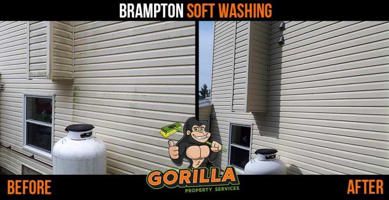 Brampton Soft Washing