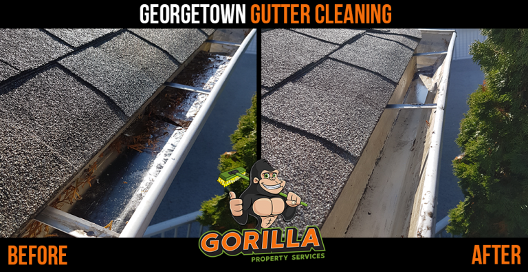 Georgetown Gutter Cleaning