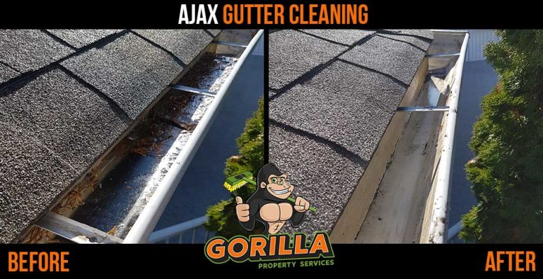 Ajax Gutter Cleaning