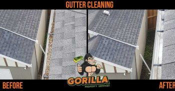 Getting Gutters Clean Before Winter